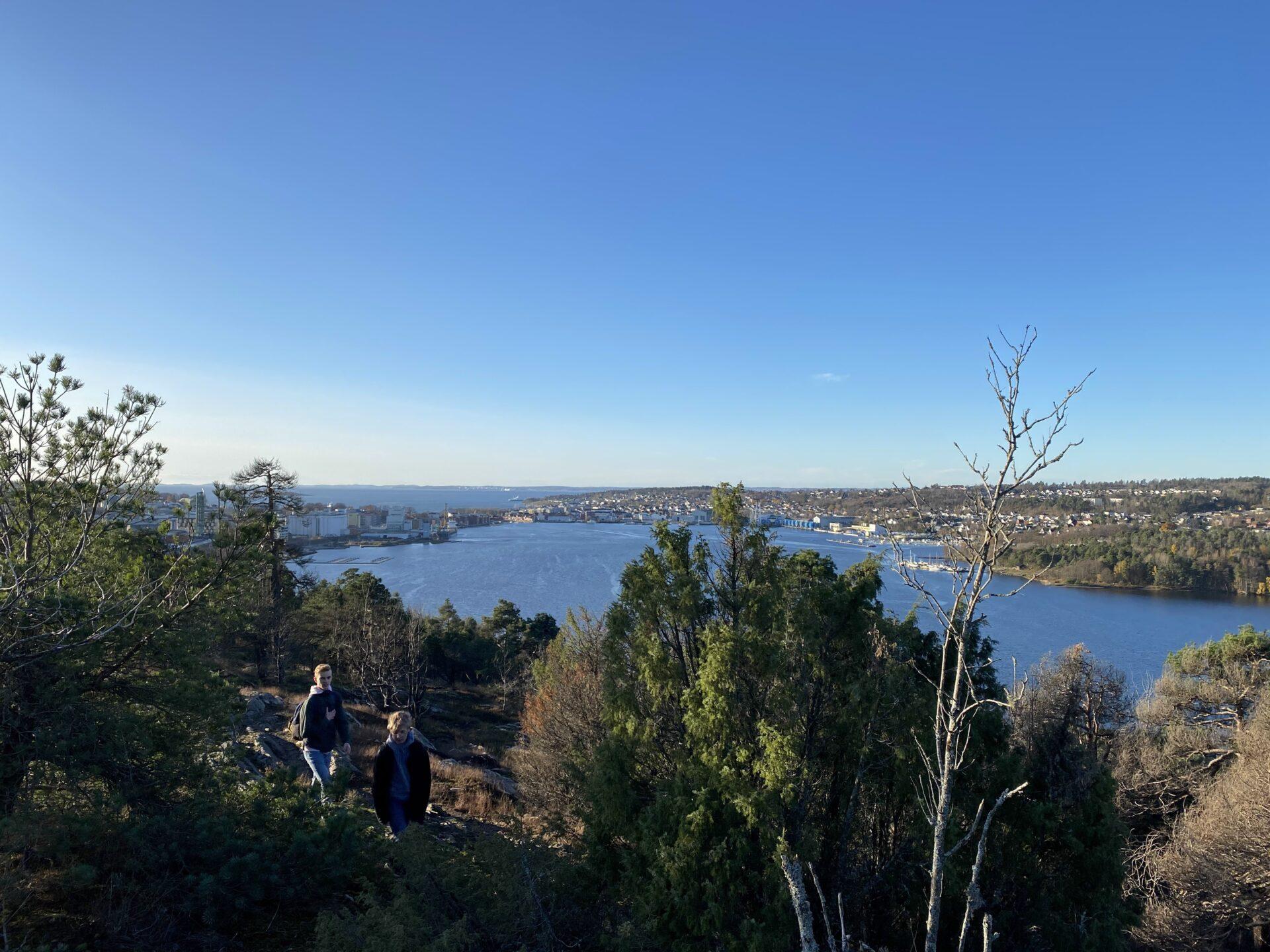 Utsikt fra Røysåsen